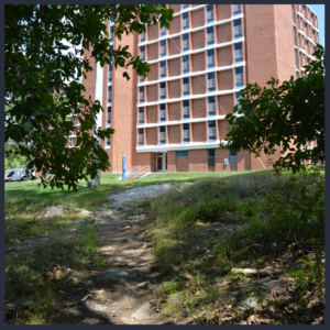 Walk to Campus; Orchard Acres Apartments offers one bedroom apartments within walking distance to UCONN!